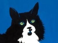 """Oreo (Black and White Cat), 20""""x16"""""""