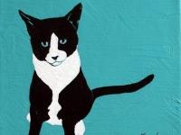 Milton (Black and White Kitten), 8x8