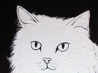 White Cat on Black (Persian Cat), 36x36