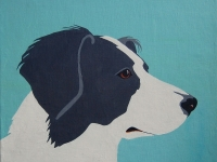 Yeardley 7 (Border Collie), 12x12