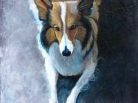 """My Jasmine (Shetland Sheepdog), 14""""x11"""""""