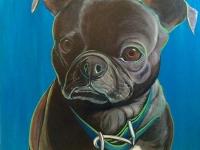 "Archie (Pug-Boston Terrier Mix) 36""x36"""