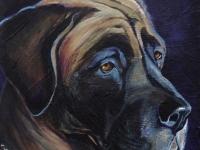 Bitty (Mastiff), 8x8