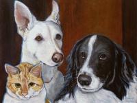 Bonington, Whitney and Karma (Cat, Greyhound and Border Collie), 11x14