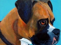 Chester (Boxer), 12x12