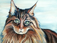 Kat (Maine Coon Cat), 11x14