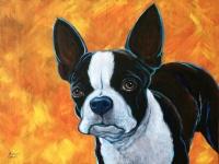 Skipper (Boston Terrier), 12x16