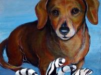 Oscar (Weinie Dog), 12x12