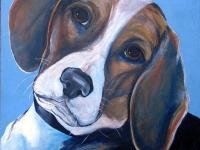Rene (Beagle), 12x12