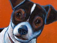 Roscoe (Fox Terrier), 5x5
