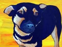Scout (German Shepherd Pup), 12x12