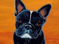 Toulouse (French Bulldog), 14x11, $200