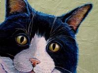 Tuxedo (Black and White Cat), 8x8, $150