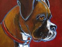 Wilma (Boxer), 5x5, $60